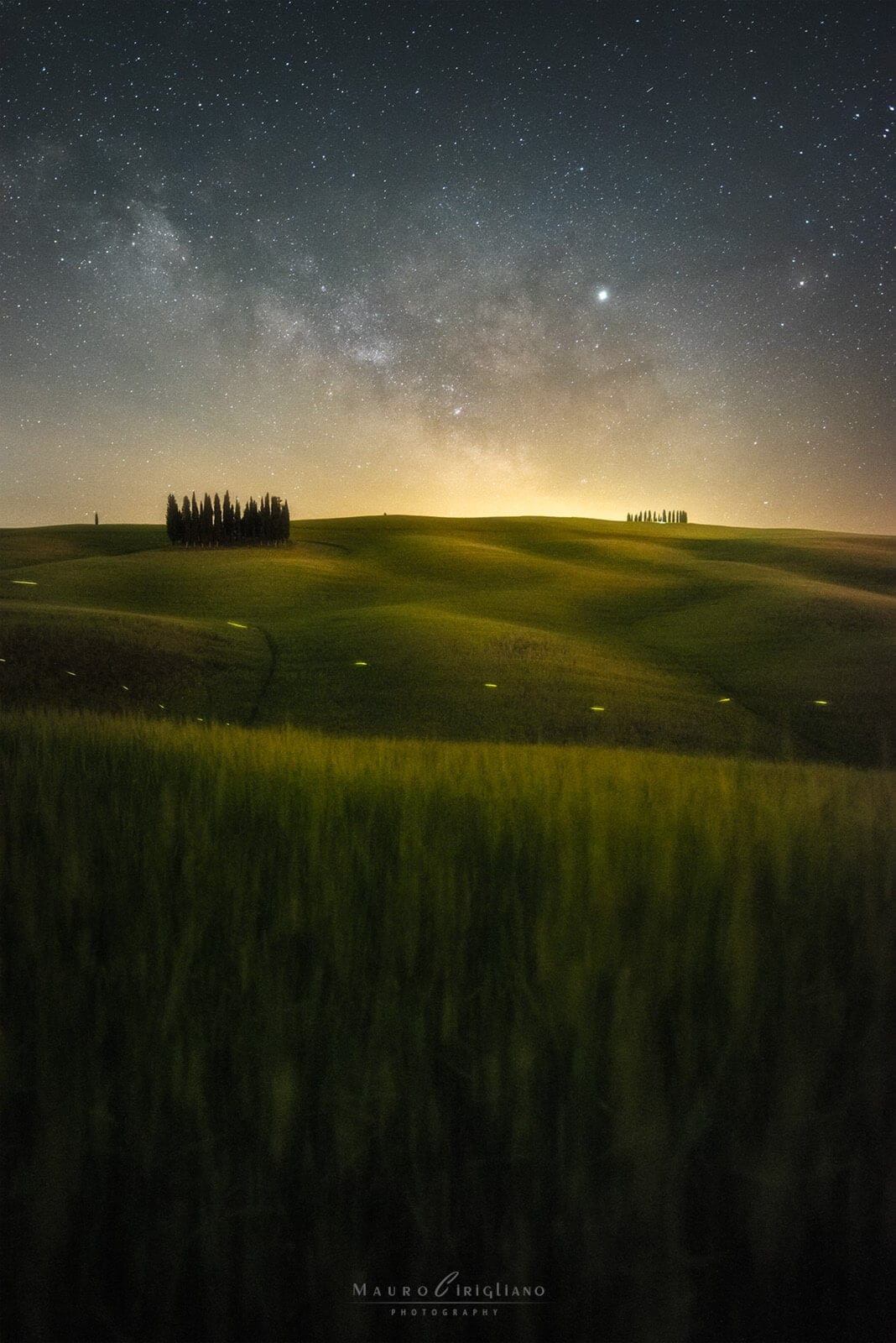 campo sinuoso con cipressi e cielo stellato