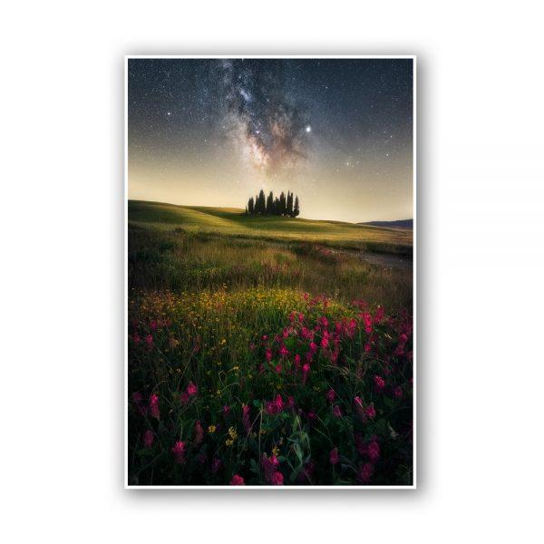 valdorcia cipressini tuscany print